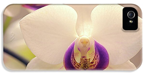Orchid IPhone 5 / 5s Case by Rona Black