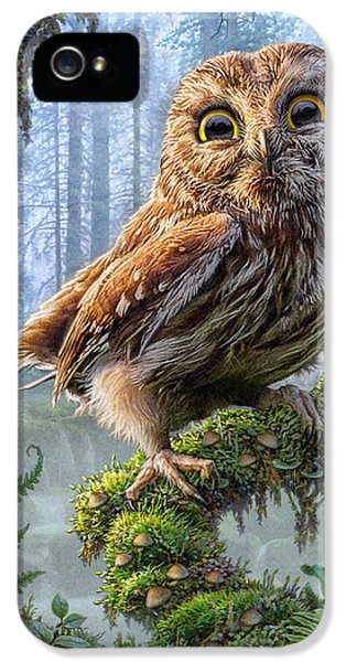 Foliage iPhone 5 Cases - Owl Perch iPhone 5 Case by Phil Jaeger