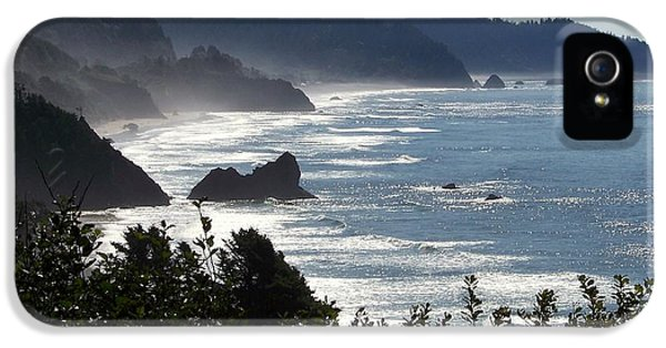 Reflective iPhone 5 Cases - Pacific Mist iPhone 5 Case by Karen Wiles