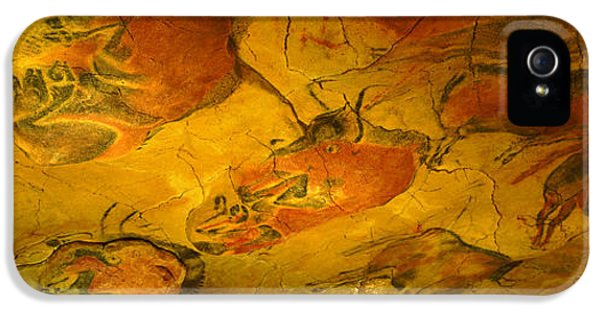 Creativity iPhone 5 Cases - Paleolithic Paintings, Altamira Cave iPhone 5 Case by Panoramic Images