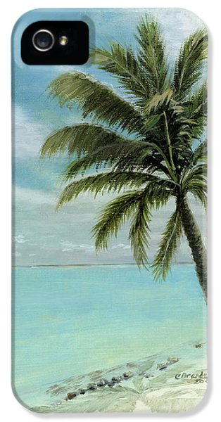 Turquoise iPhone 5 Cases - Palm Tree Study iPhone 5 Case by Cecilia  Brendel