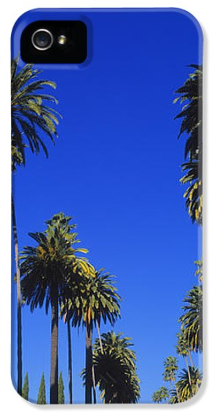 Palm Trees Along A Road, Beverly Hills IPhone 5 / 5s Case by Panoramic Images