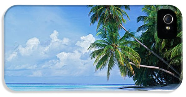 Indian Ocean iPhone 5 Cases - Palm Trees On The Beach, Fihalhohi iPhone 5 Case by Panoramic Images