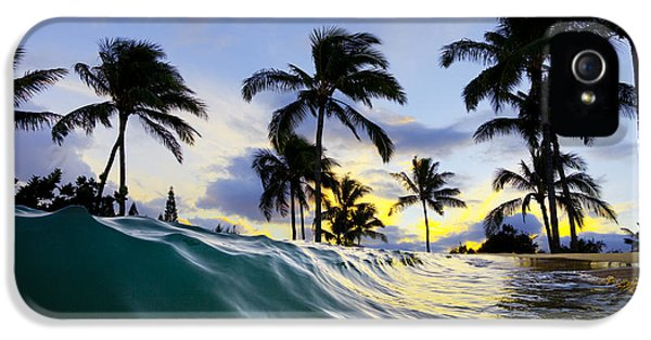 Sea iPhone 5 Cases - Palm wave iPhone 5 Case by Sean Davey