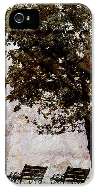 Contemplative iPhone 5 Cases - Park Benches iPhone 5 Case by Carol Leigh