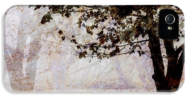Contemplative iPhone 5 Cases - Park Benches Square iPhone 5 Case by Carol Leigh