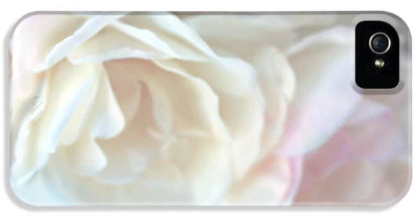 Ivory Roses iPhone 5 Cases - Pastel Rose Flowers iPhone 5 Case by Jennie Marie Schell