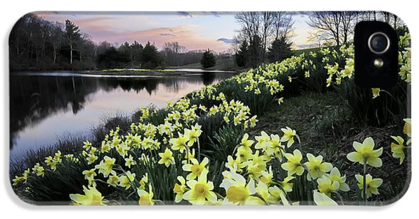 Pastel Skies Over The Laurel Ridge Daffodils IPhone 5 / 5s Case by Thomas Schoeller