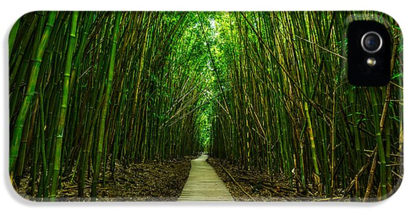 Path To Zen IPhone 5 / 5s Case by Jamie Pham