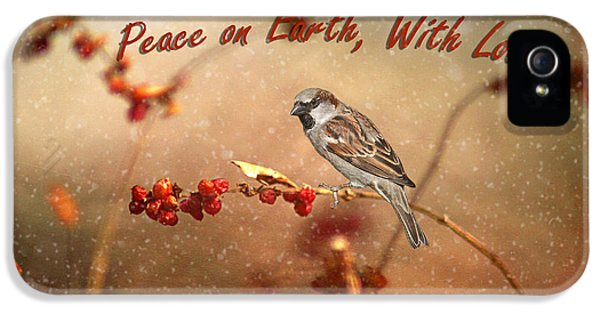 Passer Domesticus iPhone 5 Cases - Peace On Earth iPhone 5 Case by Darren Fisher