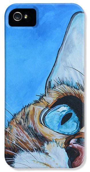 Peek A Boo IPhone 5 / 5s Case by Patti Schermerhorn