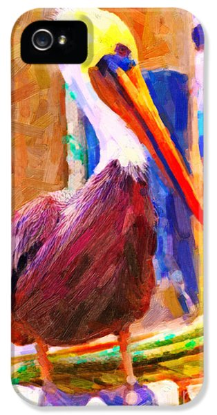 Beak iPhone 5 Cases - Pelican On The Dock iPhone 5 Case by Wingsdomain Art and Photography