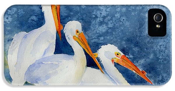 Burnt Sienna iPhone 5 Cases - Pelicans At The Weir iPhone 5 Case by Pat Katz