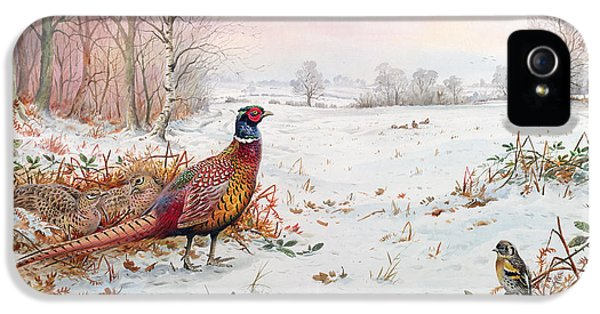 Pheasant And Bramblefinch In The Snow IPhone 5 / 5s Case by Carl Donner