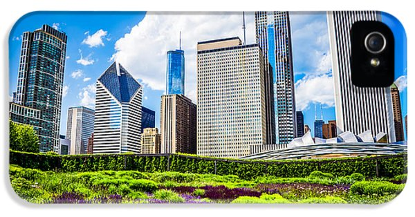 One Prudential Plaza Building iPhone 5 Cases - Picture of Lurie Garden Flowers with Chicago Skyline iPhone 5 Case by Paul Velgos