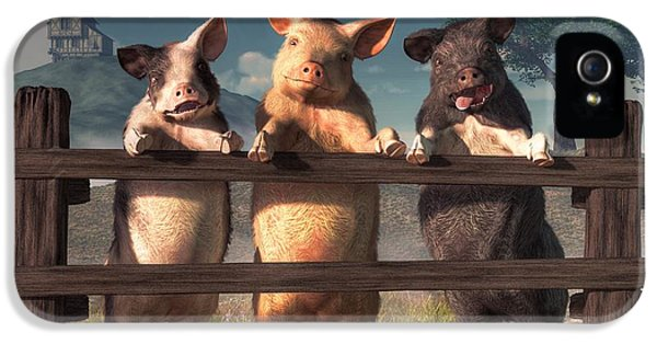 Pigs On A Fence IPhone 5 / 5s Case by Daniel Eskridge