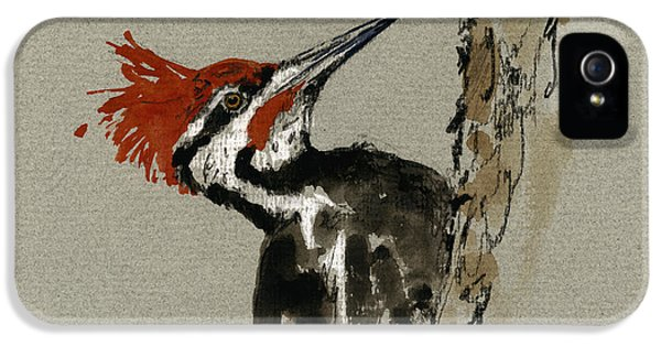 State Bird iPhone 5 Cases - Pileated Woodpecker iPhone 5 Case by Juan  Bosco