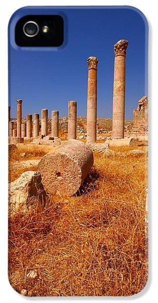 Jordan iPhone 5 Cases - Pillars Of Ruin iPhone 5 Case by FireFlux Studios