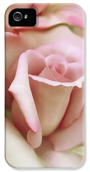Ivory Roses iPhone 5 Cases - Pink and Ivory Rose Portrait iPhone 5 Case by Jennie Marie Schell