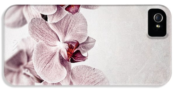 Grunge Style iPhone 5 Cases - Pink orchid vintage iPhone 5 Case by Jane Rix
