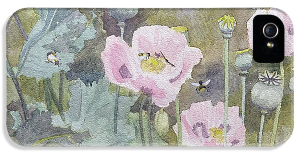 Bee iPhone 5 Cases - Pink poppies with bees iPhone 5 Case by Rosalie Bullock