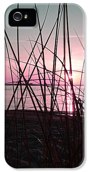 End Of Days iPhone 5 Cases - Pink Sunset iPhone 5 Case by Marianna Mills