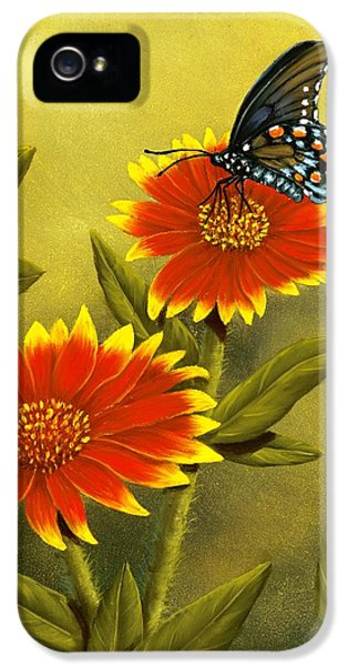 Pipevine Swallowtail And Blanket Flower IPhone 5 / 5s Case by Rick Bainbridge