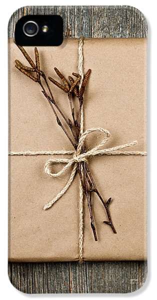 Wrapped iPhone 5 Cases - Plain gift with natural decorations iPhone 5 Case by Elena Elisseeva