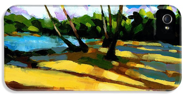 Sand iPhone 5 Cases - Playa Bonita 2 iPhone 5 Case by Douglas Simonson