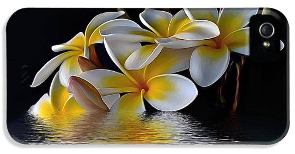 Yellow And White Plumeria Flower Frangipani iPhone 5 Cases - Plumeria Reflections iPhone 5 Case by Kaye Menner