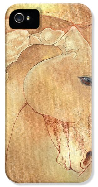 Poll Meet Atlas Axis IPhone 5 / 5s Case by Catherine Twomey