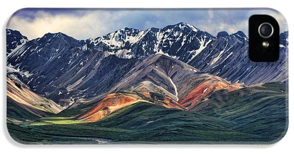 Mountain iPhone 5 Cases - Polychrome iPhone 5 Case by Heather Applegate