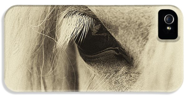Eyeball iPhone 5 Cases - Pony in Sepia  iPhone 5 Case by Tim Gainey