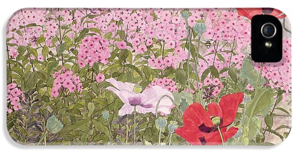 Bee iPhone 5 Cases - Poppies And Phlox iPhone 5 Case by Linda Benton