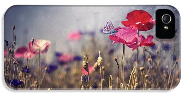 Poppy iPhone 5 Cases - Poppies iPhone 5 Case by Magda  Bognar