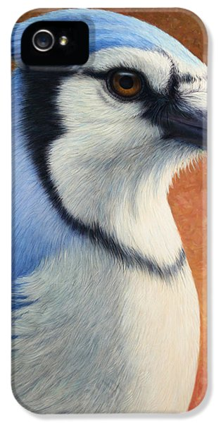 Blue Bird iPhone 5 Cases - Portrait of a Bluejay iPhone 5 Case by James W Johnson