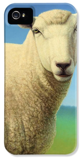 Ewe iPhone 5 Cases - Portrait of a Sheep iPhone 5 Case by James W Johnson