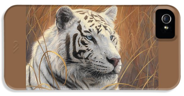 Mammal iPhone 5 Cases - Portrait White Tiger 2 iPhone 5 Case by Lucie Bilodeau