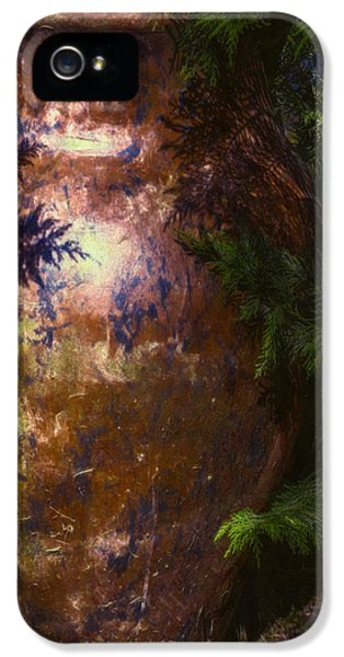 Loam iPhone 5 Cases - Potters Clay iPhone 5 Case by Jean OKeeffe Macro Abundance Art