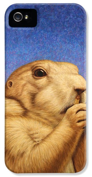 Mammal iPhone 5 Cases - Prairie Dog iPhone 5 Case by James W Johnson