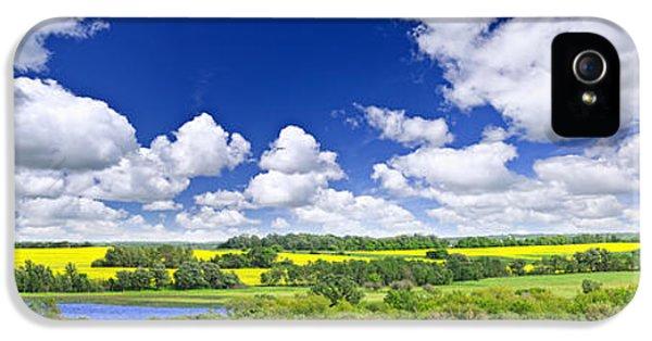 Farmland iPhone 5 Cases - Prairie panorama in Saskatchewan iPhone 5 Case by Elena Elisseeva