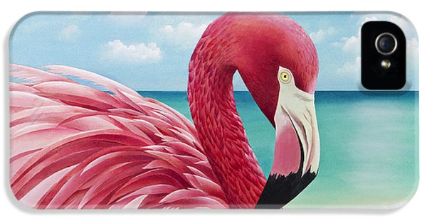 Pretty In Pink IPhone 5 / 5s Case by Carolyn Steele
