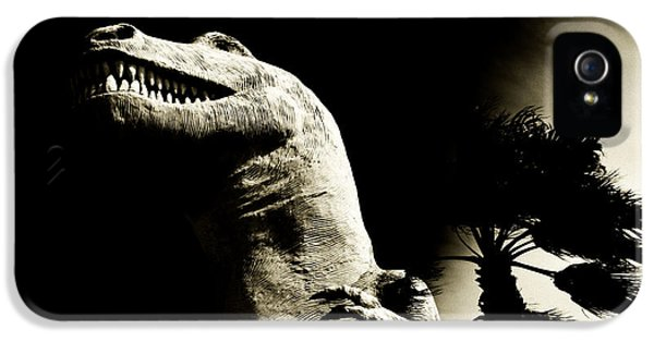 10 Bells iPhone 5 Cases - Primal Rex iPhone 5 Case by Cindy Nunn