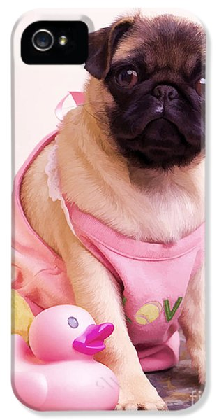 Clothing iPhone 5 Cases - Pug Puppy Bath Time iPhone 5 Case by Edward Fielding