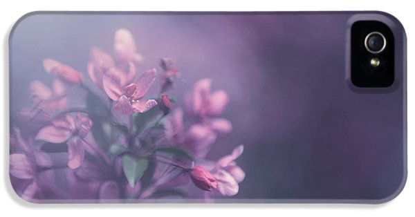 Blossom iPhone 5 Cases - Purple iPhone 5 Case by Carrie Ann Grippo-Pike