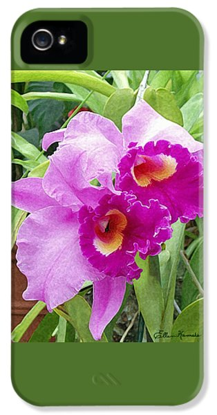 Purple Cattleya Orchids IPhone 5 / 5s Case by Ellen Henneke