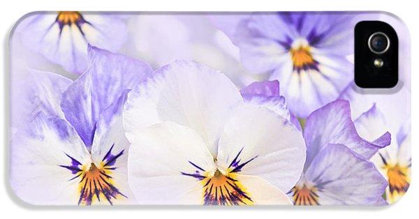 Summertime iPhone 5 Cases - Purple Pansies iPhone 5 Case by Elena Elisseeva
