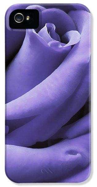 Closeup iPhone 5 Cases - Purple Velvet Rose Flower iPhone 5 Case by Jennie Marie Schell