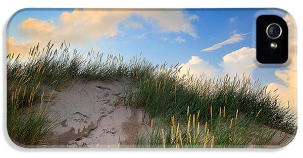 Danish iPhone 5 Cases - Raabjerg Dune iPhone 5 Case by Inge Johnsson