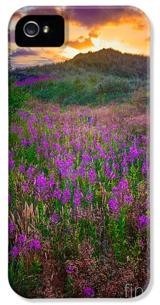 Danish iPhone 5 Cases - Raabjerg Fireweeds iPhone 5 Case by Inge Johnsson